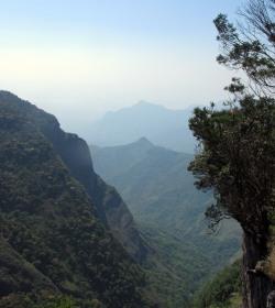 View from Pillar Rocks