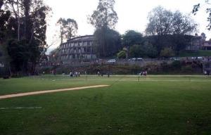 Bendy Field