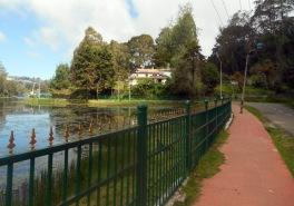 Lake Walk
