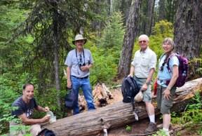 bear creek hike 3